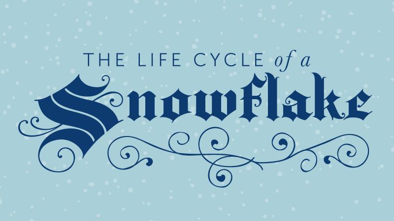 Snowflake Lesson Plan