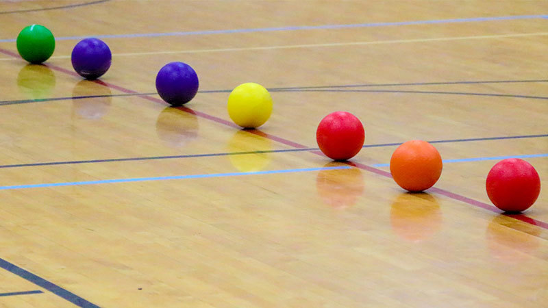 Rainbow of dodgeballs, Teaching History Dodgeball