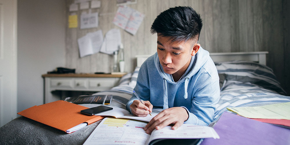 High school senior studying online